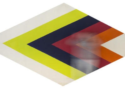 Laurence Aëgerter Colorfield Phaedra Noland 2018 ed./6 130×270